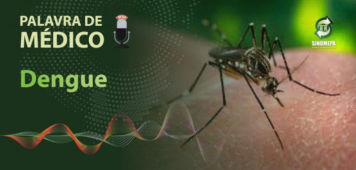 Palavra de Médico – Dengue